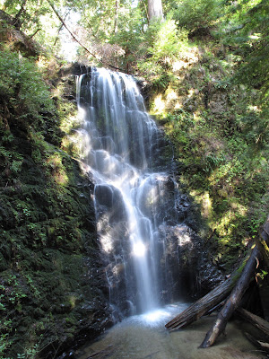 Berry Falls in Big Basin