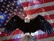 Results found at > Home > Fireworks Flag > Fireworks Flag