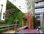 #8 Vertical Garden Design Ideas