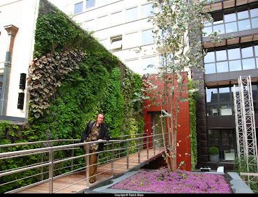 #8 Vertical Garden Design Ideas