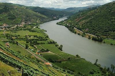 www.flickr.com/photos/francisco_oliveira_portugal/