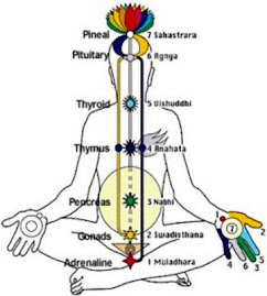 Kundalini Yoga