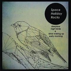 Space Holiday Rocks - Sleepless night Birds & Birds Waking Up Early Morning