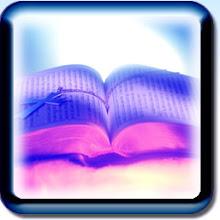 Online Parallel Bible