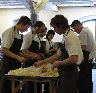 Stagires hard at work at Noma