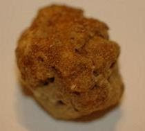 &quot;White Truffle from Montg&quot; - not what it first appears