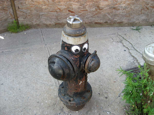 Cross-Eyed Hydrant - On Roebling in Williamsburg.