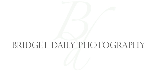 Bridget Daily Photography