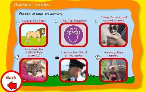 animals needs
