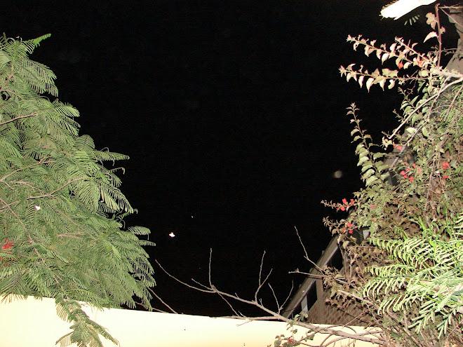 Mas MARIPOSAS ET OVNIS 09/01/2010 Huacho Peru