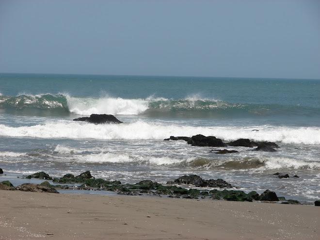 Ultimos Grandiosos Avistamientos 20/febrero/2010,Tour Shambala Santa Rita,Playas ciudades Sagradas