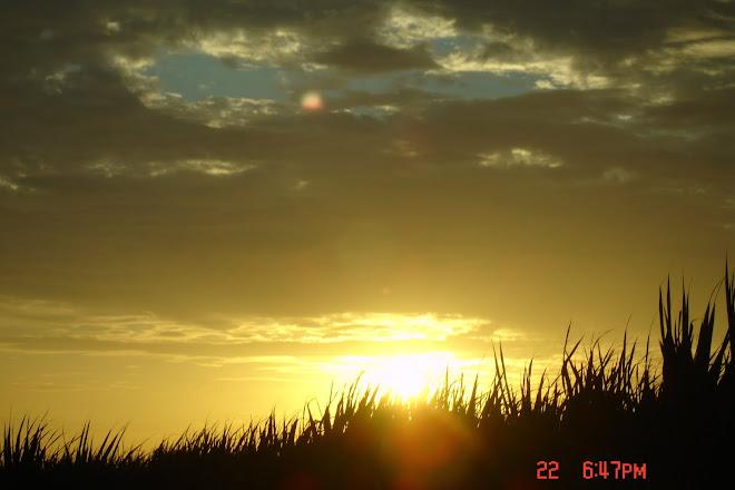 ´´NAVE NODRIZA en nube,debajo Esfera o NIBIRU y debajo el sol sobre las CAÑAS DE AZUCAR y debajo ??