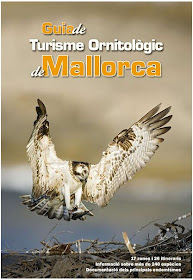 Guia de turisme ornitológic