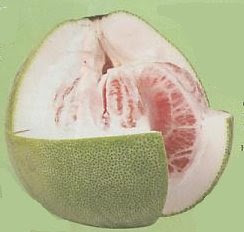 orange - Pomelo fruit  beneficial to health