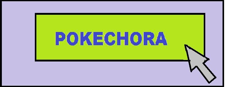 POKECHORA