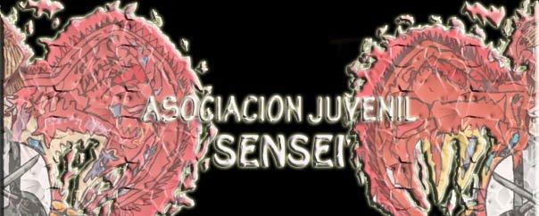 ASOCIACION JUVENIL SENSEI