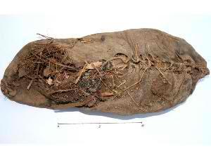 Sepatu tertua berusia 5000 tahun