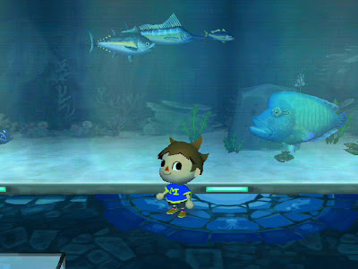 animal crossing napoleon fish aquarium fishing