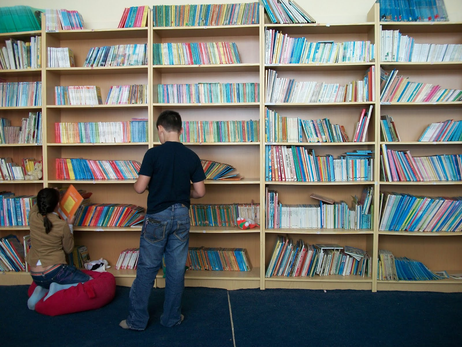 Image result for foreign library