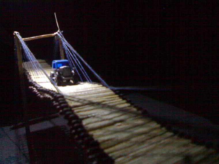 homemade suspension bridge 11