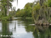 Wakulla Springs, FL