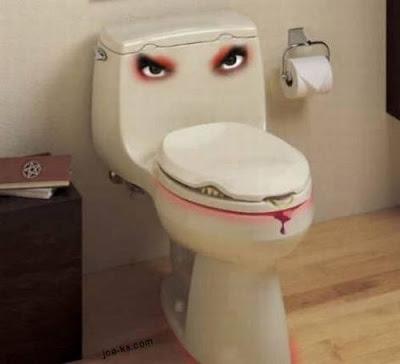 unusual and Strange toilets Seen On www.coolpicturegallery.net