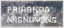 Abrigo de Henri Salinas Matisse