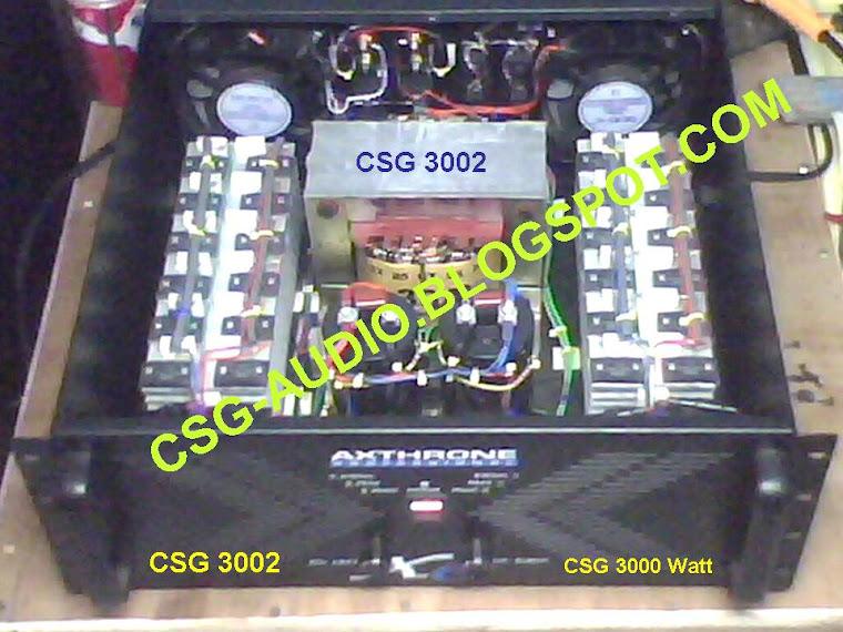 csg3002