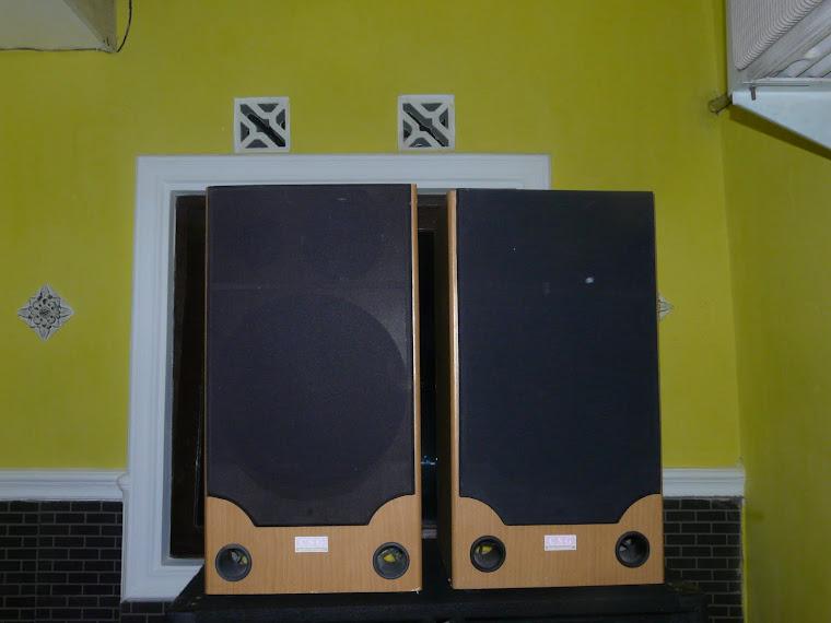 speaker home 12 inch