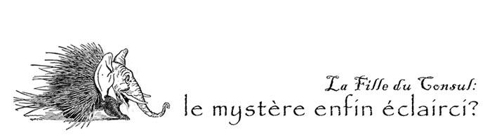 la fille mysterieuse