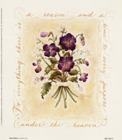 Wisconsin Wood Violet