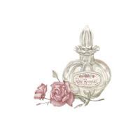 Perfume Bottle ecg