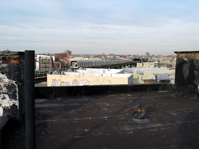 Bucolic Bushwick a Brooklyn Rooftop Container Vegetable Garden
