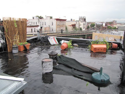 Bushwick, Brooklyn Tornado Damage