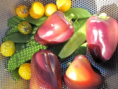 Bushwick Rooftop Container Vegetable Harvest
