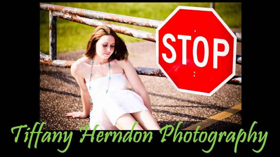 Tiffany Herndon Photography