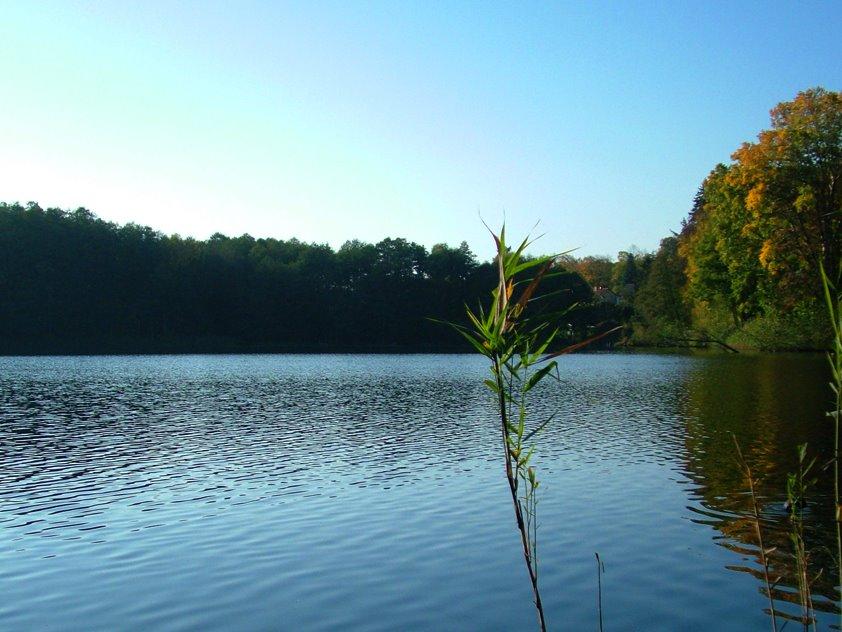 [lake]
