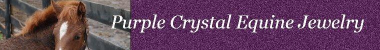 PurpleCrystalEquineJewelry