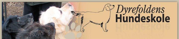 Dyrefoldens Hundeskole