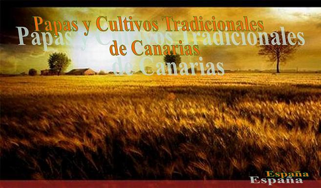 Papas y Cultivos Tradicionales de Canarias