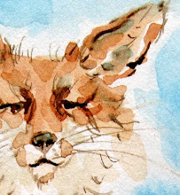 My Little red fox story and Watercolor