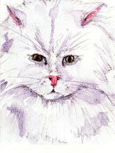 Ægyptisk kat