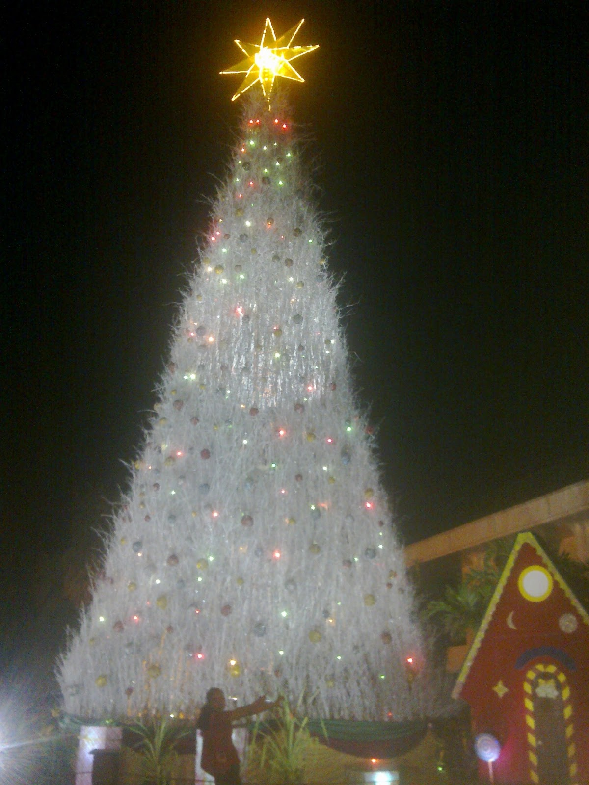 Scrumptious Munchkin Hello Christmas At Uplb