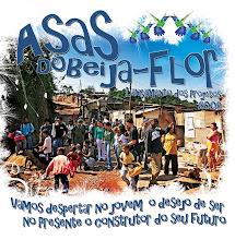 ASAS DO BEIJA-FLOR