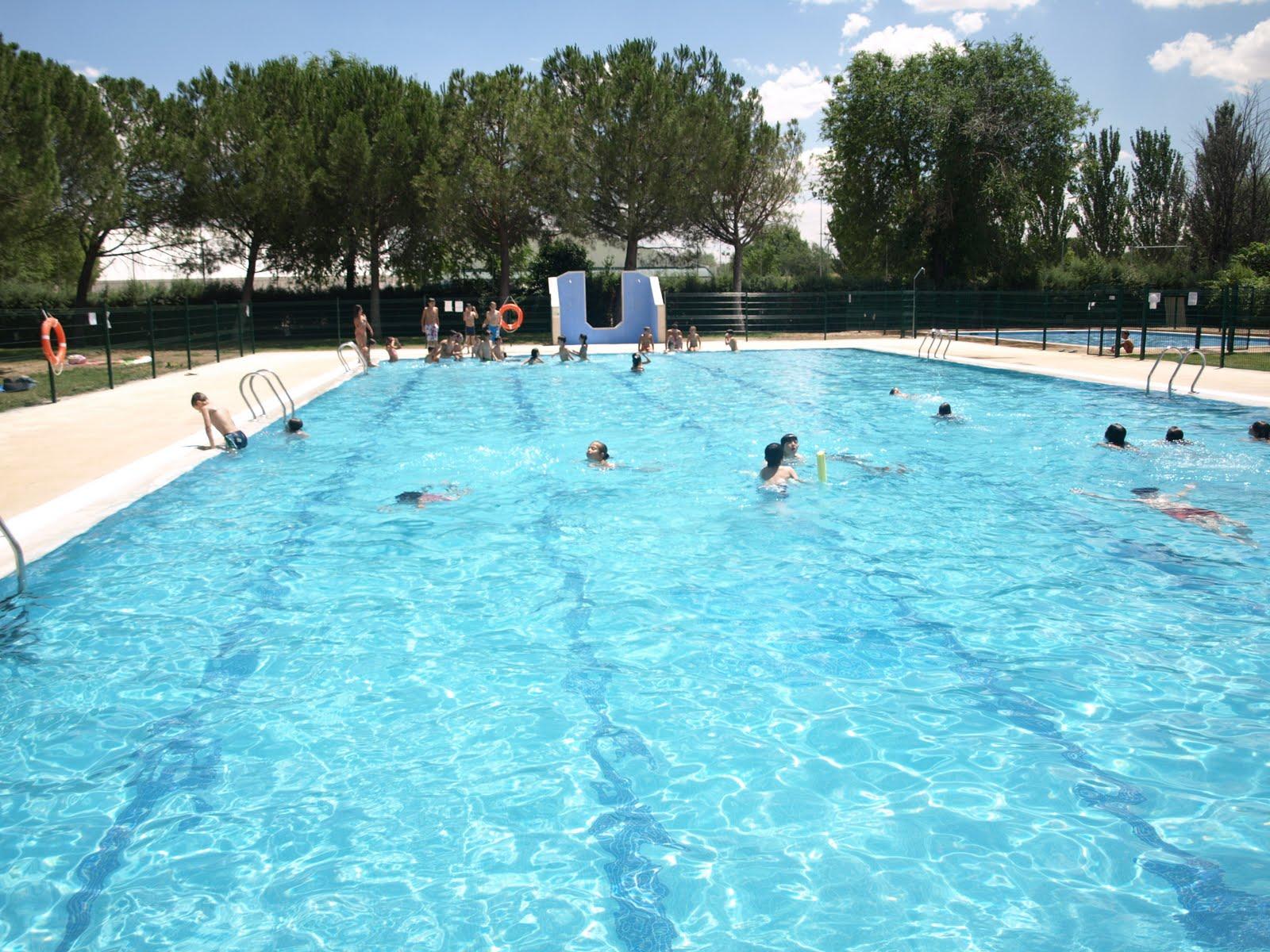 Escuela de judo piscina gratis para los judokas for Piscina de alcobendas