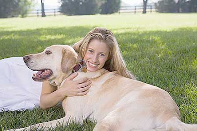 Sell Pet Insurance