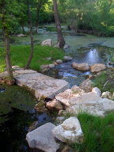 SA River headwaters springs