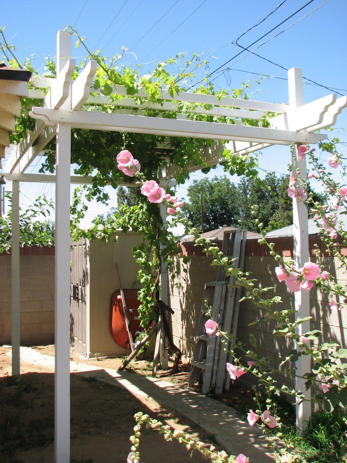 Morning Glory Cottage Backyard Update