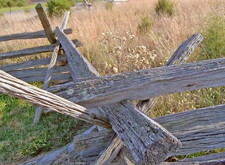 zig zag fence