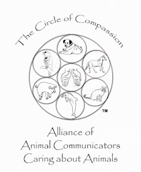 Alliance of Animal Communicators Caring About Animals (AACCA)